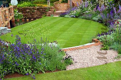 Правильно подобранный газон лучше, чем лужайка